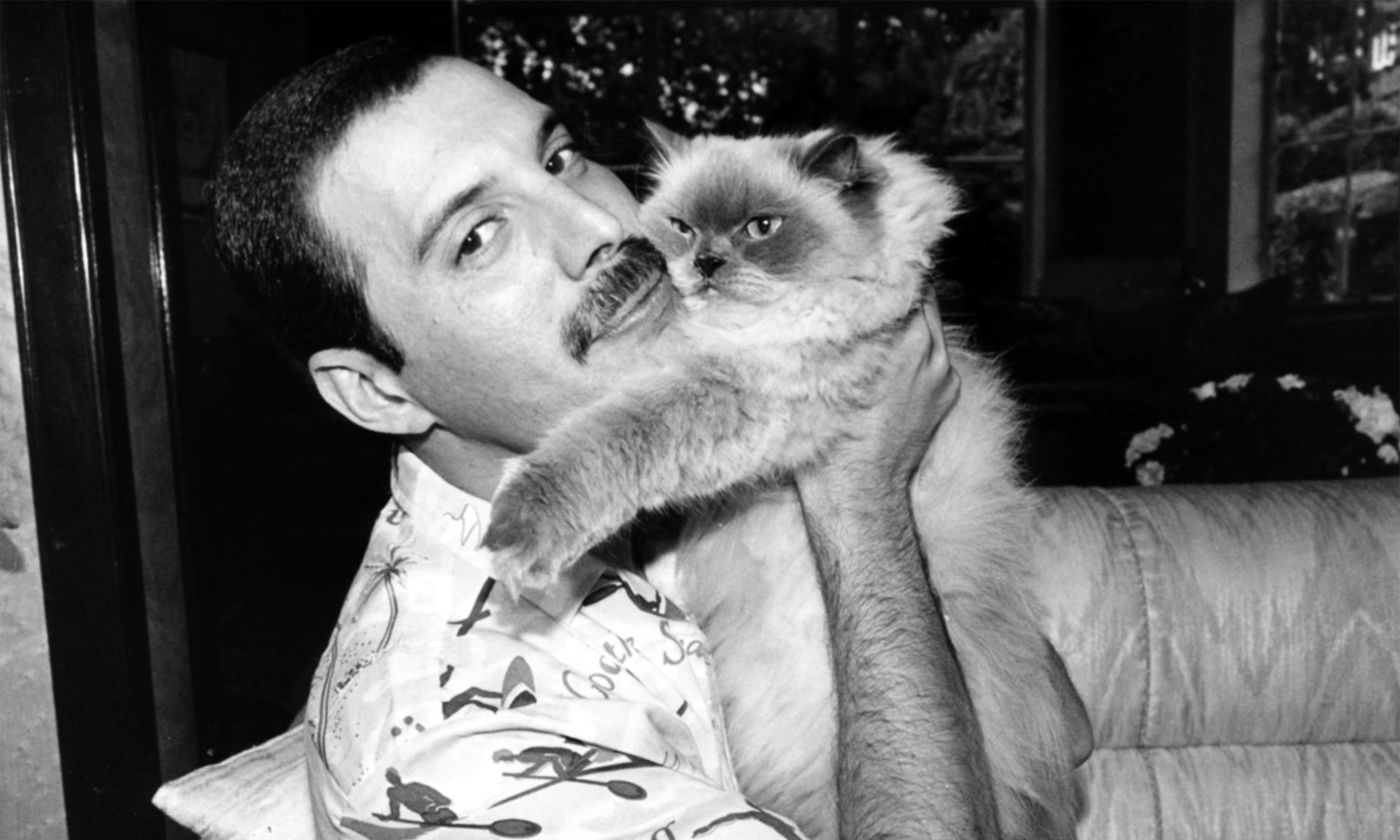 freddie-with-his-cat